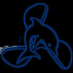 Drafinsub logo dolphin